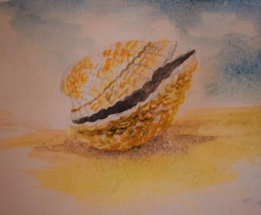 CockelShell - A Tangable Beauty of Absence
